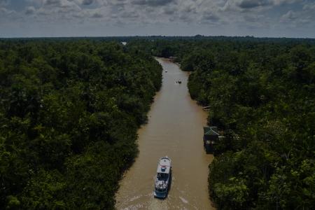 Amazônia: Cobiça e Soberania